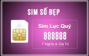 sim luc quy 8 1 300x188 - SIM Lục Quý 8 - SIM VIP giá cực hấp dẫn tại TOPSIM.vn